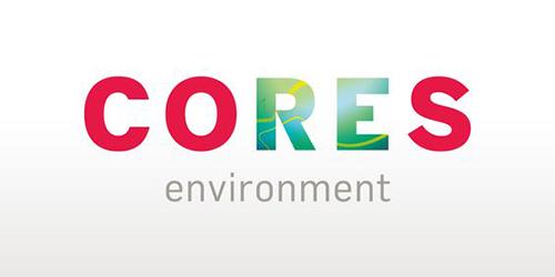 Cores Environment