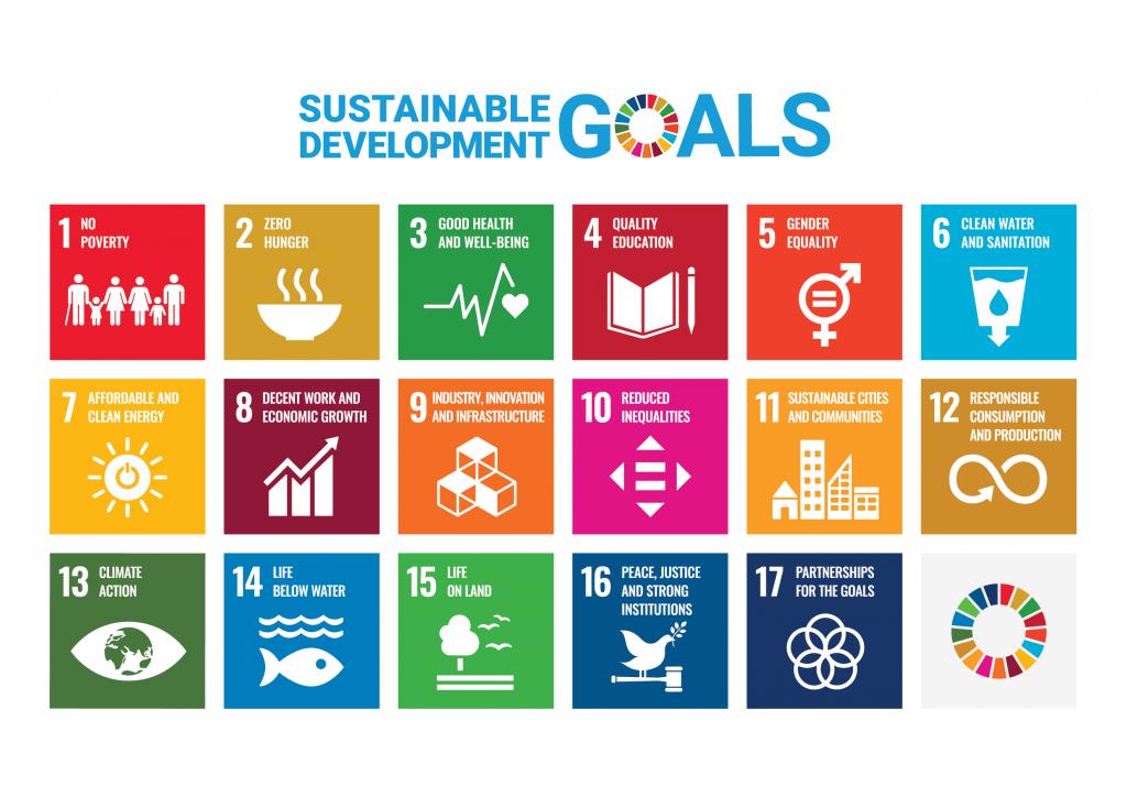 SDG 17 doelen InnoMax
